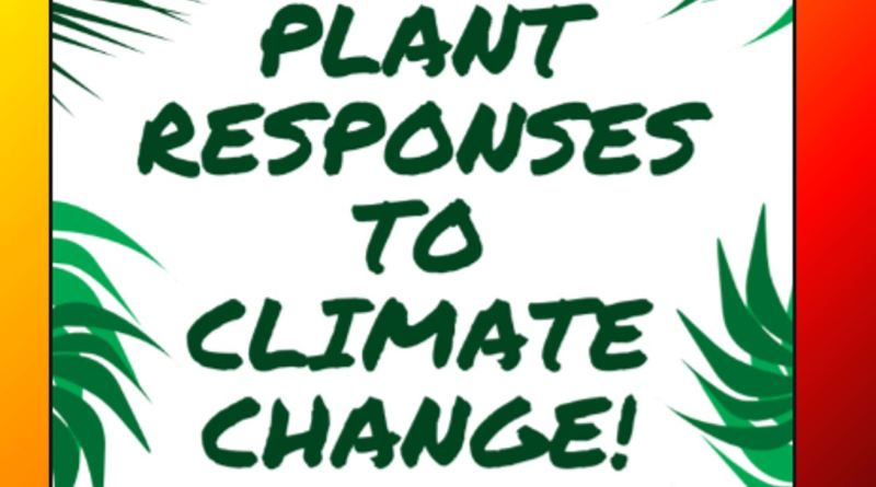 Plants Response to Climate Change