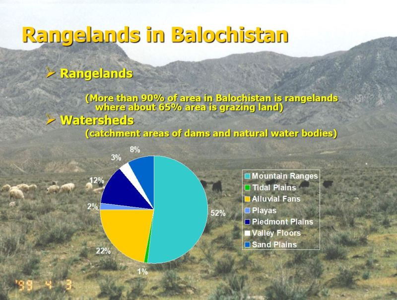 Rangelands of Balochistan - Features, Zones, Classification, Flora, Grazing Systems, Importance, Threats, Management Issues and Steps for Improvements - forestrypedia.com