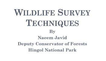 Wildlife Survey Techniques (Powerpoint Presentation)