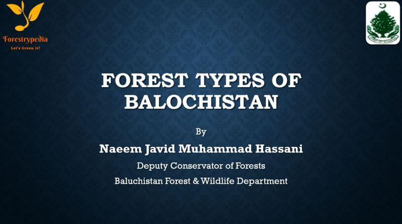 Forest Types of Balochistan (Powerpoint Presentation) - Forestrypedia