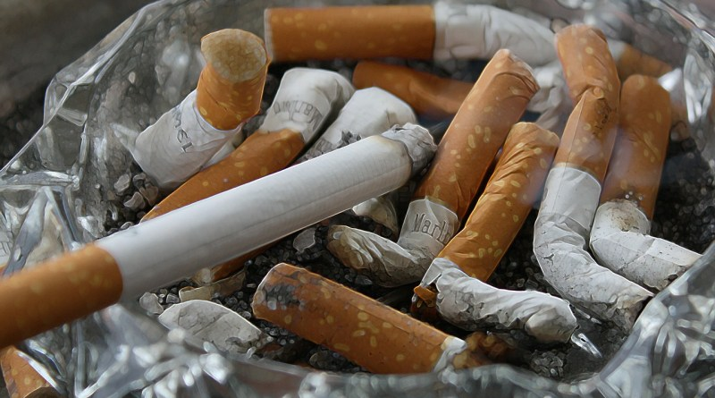 Cigarette Butts are The Most Littered Item in the World - Forestrypedia
