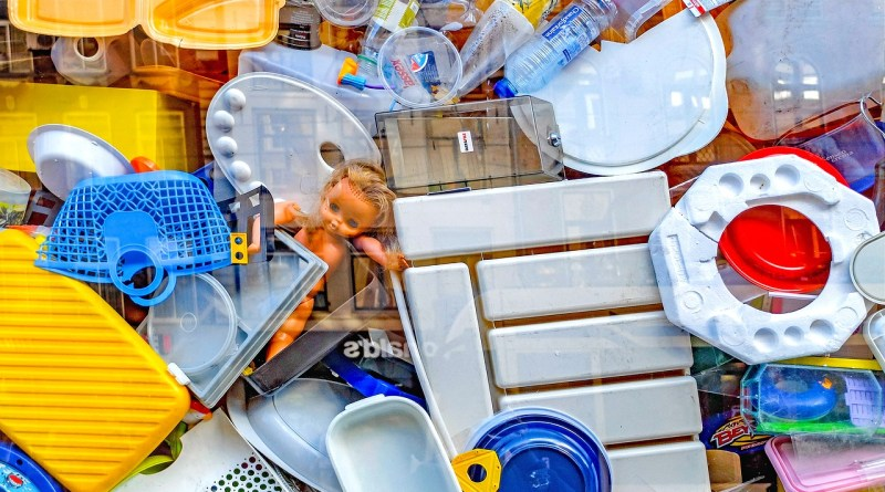 These Plastic Recycling Myths Will Blow Your Mind - Forestrypedia