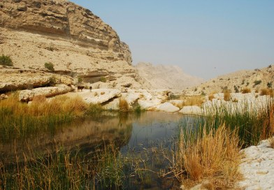Takkar National Park - The Second National Park of Sindh - forestrypedia.com