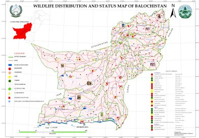 Wildlife Distribution and Status Map of Balochistan - forestrypedia.com