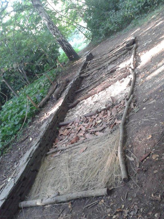Building a Barefoot Walk 2
