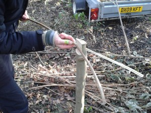 Splitting a hazel rod on a riving post.