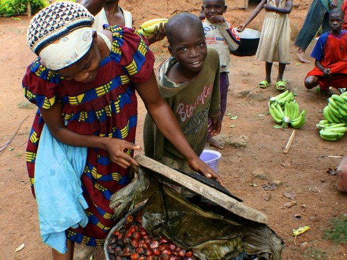 Scientific research has found that children in Africa that live in communities where there's more forest cover have higher dietary diversity and more fruit and vegetable consumption up to a certain threshold. CIFOR/Terry Sunderland