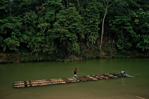 REDD+, a global mechanism for reducing emissions from deforestation and forest degradation, has been adopted in Indonesia as an opportunity for improving forest governance. CIFOR/Tomas Munita