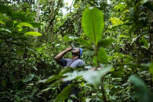 PhD student Prosper Sabongo measures the tree canopy in the billage of Masako, Kisangani, Democratic Republic of Congo. Ollivier Girard/CIFOR