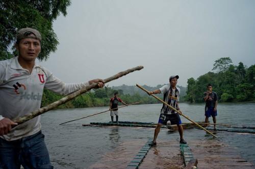 La madera es una parte importante de las estrategias de supervivencia de los pequeños productores en la Amazonía de Ecuador. Fotografía de Kate Evans/CIFOR
