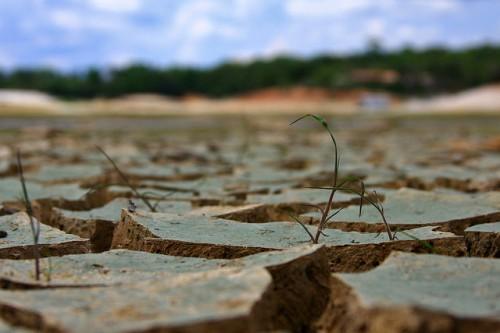 Tener la capacidad de predecir podría resultar en alertas anticipadas para agricultores y funcionarios de gobiernos locales, para que tomen medidas con el fin de evitar incendios forestales y serios daños a los bosques, a la propiedad y los cultivos, dijeron investigadores que trabajan para el Centro para la Investigación Forestal Internacional. Fotografía cortesía de: Hudson Alves