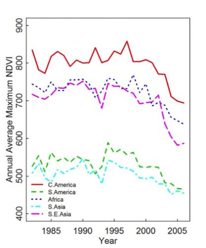 Figura 1. Tendencias en verdor NDVI (proxy de productividad primaria) de la vegetación de montaña durante el periodo 1982–2006 para cinco regiones continentales ubicadas en latitudes pantropicales.
