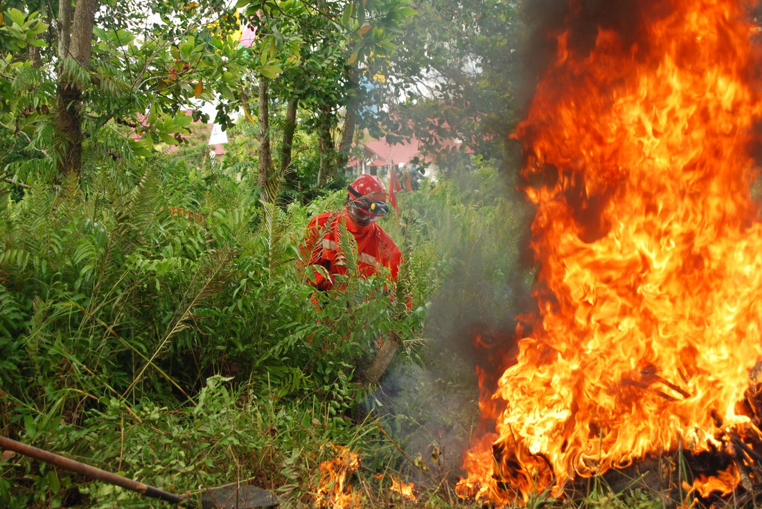 Wet and Wild: Indonesian Forest Fires