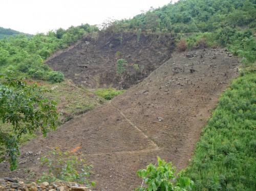Lereng bukit gundul di China, tempat pemerintah mencoba menghutankan kembali lereng untuk mencegah erosi. Nick Hogarth/ CIFOR