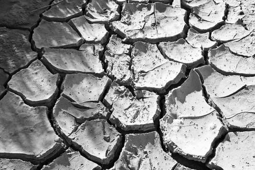 Nuevas investigaciones evidencian el efecto de los bosques sobre las precipitaciones en la Amazonia, y revelan que de continuar la deforestación, las lluvias en el sur de Brasil continuarán siendo afectadas. Fotografía de Flickr.