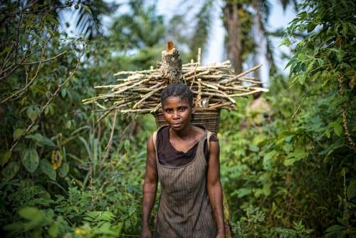 Seorang perempuan mengumpulkan kayu bakar di Republik Demokratik Kongo. Sebuah laporan PBB baru-baru ini mendebat bahwa pola pembangunan tidak berkelanjutan meningkatkan dan mengeksploitasi pekerjaan kaum perempuan yang tidak mendapat imbalan untuk memelihara keluarga mereka. Ollivier Girard/foto CIFOR