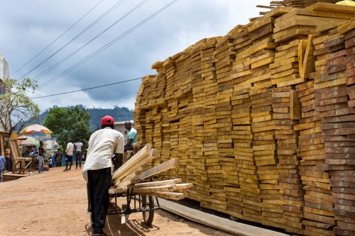 Wood Seller-wood quality is related to sawmill waste, - Montée Parc Market, - Yaoundé, Cameroon.