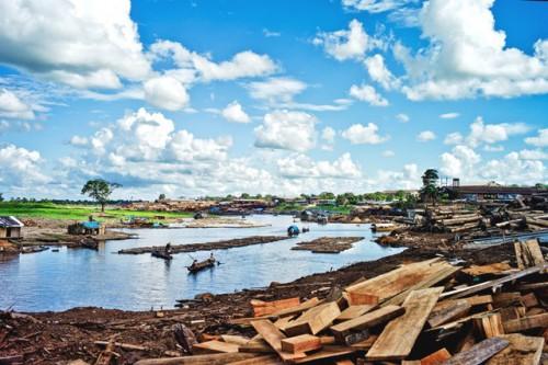 Punto de acopio de madera en la Amazonía peruana. Los esfuerzos para frenar la tala ilegal pueden ser más efectivos si se concentran primero en los grandes madereros, sugiere una investigación. Foto Aymé Muzo/CIFOR.