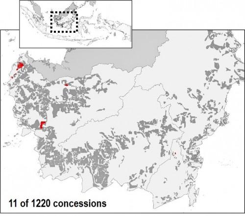 Hanya 11 dari 1220 konsesi kelapa sawit yang terdaftar secara publik di Kalimantan (warna merah) dipegang oleh perusahaan publik yang muncul dalam studi penelitian yang dilakukan CIFOR tentang pendanaan di sektor kelapa sawit.
