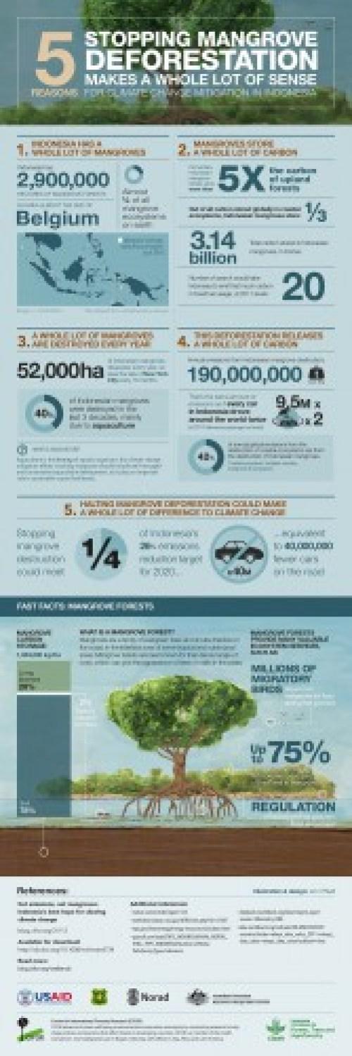 Mangrove-emissions-Infographic