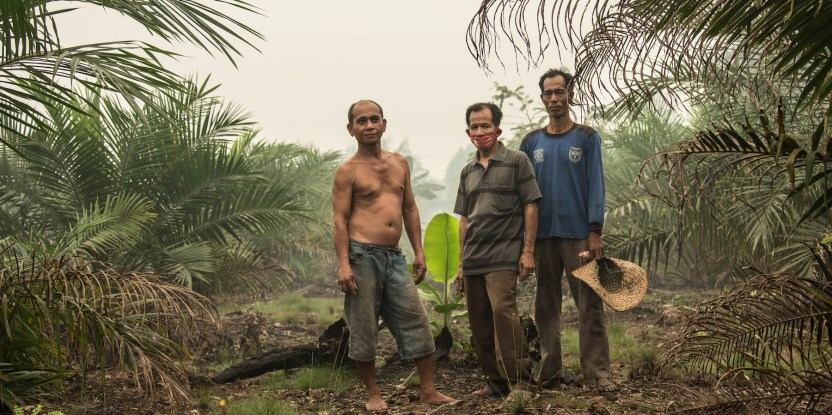 Local law and order - CIFOR Forests News