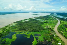 Amazon River winds its way through forested and deforested landscapes