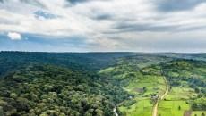 COP23: Una explicación sobre los pagos del Fondo Verde para el Clima