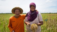 Global commitment growing for gender equality in climate action
