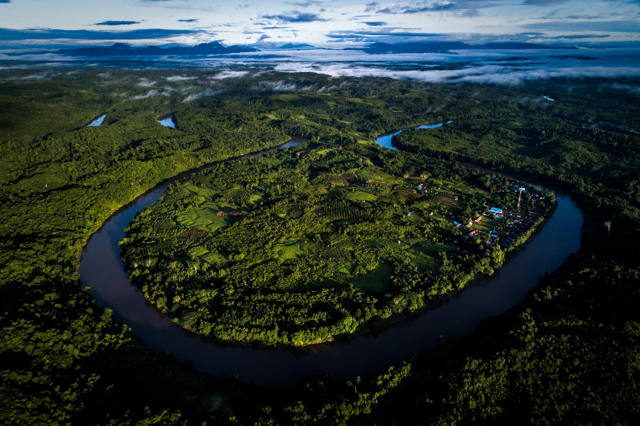 Borneo's carbon sink