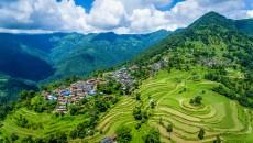 Lo que los bosques de montaña hacen por el bienestar humano