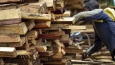 Décoder le marché du bois domestique au Cameroun