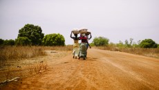 Faire émerger les approches paysagères sur le terrain