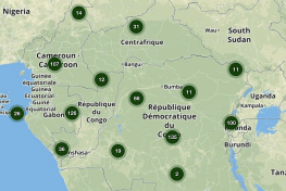 Forestry, Central Africa, COMIFAC, OFAC,