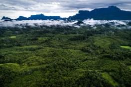 west kalimantan, indonesia, borneo, aerial view, landscapes