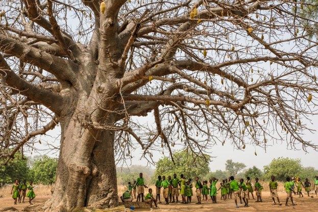 Quand des terres ancestrales tombent sous le joug d'une frontière internationale
