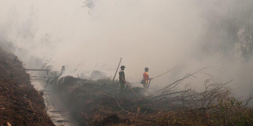 Kalimantan central, Indonesia, durante los incendios de 2015. (Foto: Aulia Erlangga/CIFOR)