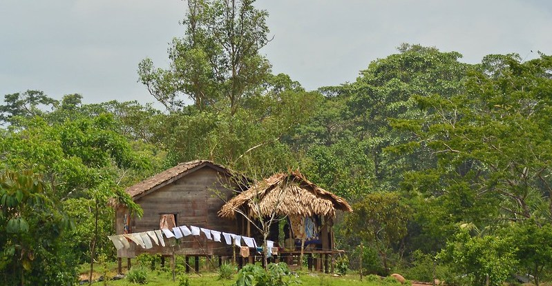 Mayangna Community