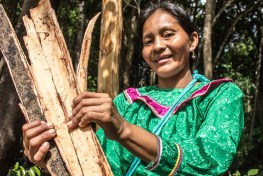 A woman in a green dress holds firewood