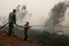 An image of army officers in camouflage uniforms spraying water in smoke covered peatland areas