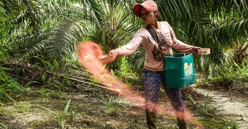 A woman wearing a bag on her side, scatters fertilizer from a bowl