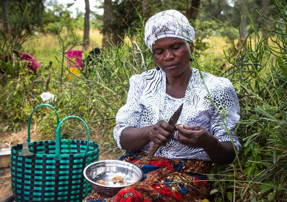 A seated woman cuts food over a bowl