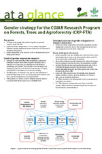 Gender-strategy-for-the-CGIAR-Research-Program-on-Forests-Trees-Agroforestry