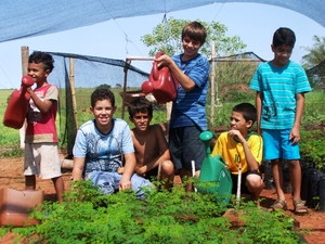 Children in Marília, Brazil, learning to nurture moringa saplings as part of their school curriculum. Photo: B4FN