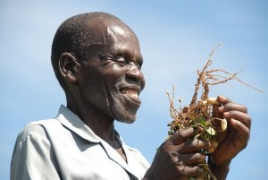 Photo: Y. Wachira/Bioversity International
