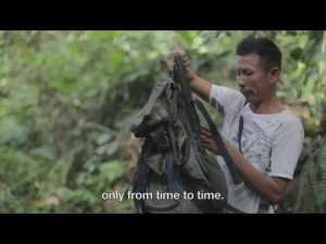 Click on image to watch the video on bushmeat hunting in Colombia.