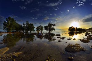 Photo: Bernard II Recirdo for 2016 Global Landscapes Forum Photo Competition