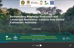 Incorporating Bioenergy Production and Landscape Restoration: Lessons from Central Kalimantan