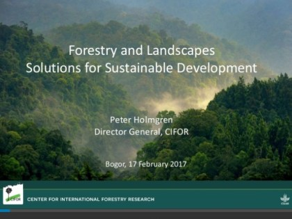Forestry and landscapes: Solutions for sustainable development