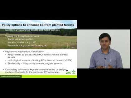 Ecosystem services from planted forests