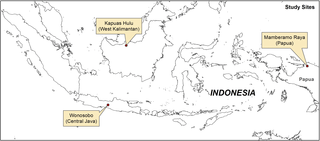 Motivation Matters: Lessons for REDD+ Participatory Measurement, Reporting and Verification from Three Decades of Child Health Participatory Monitoring in Indonesia